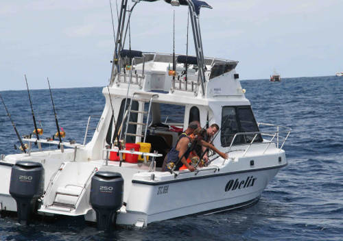 vessels-obelix